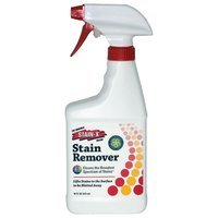 Stain-x Carpet Stain Remover (16 Ounce Bottle) [Kitchen]