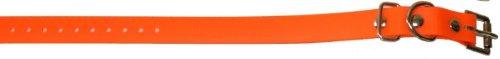 Educator Biothane Collar, 3/4-Inch, Orange
