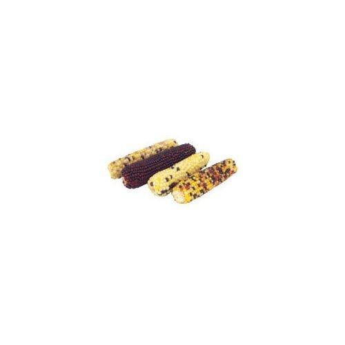 Vitakraft Small Animal Mini Pop Indian Corn, 6-Ounce Bag