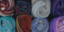 Wool Roving 12 .22 Ounce 8/Pkg-Variegated