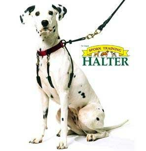 Sporn Training Dog Halter - Large