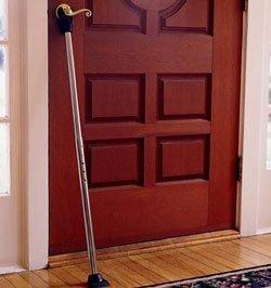 Door Guard (Chrome)