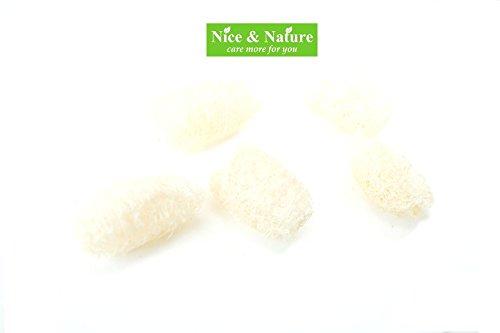 Mini Natural Loofah Exfoliating Facial Cleansing Scrub, Face Loofah , Natural Loofah Fiber Face Sponges, Exfoliating Facial Cleansing Loofah Sponge Set of 5