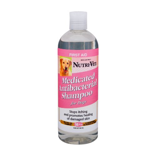 Nutri-Vet Medicated Antibacterial Tea Tree Oil Shampoo for Dogs, 16-Ounce