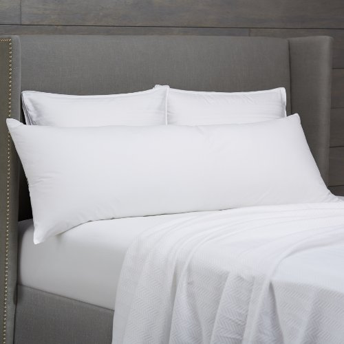 Pinzon Body Pillow with Cover