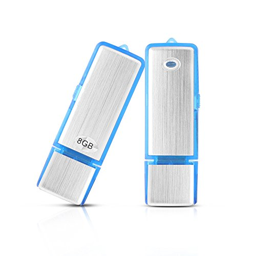 Btopllc USB Digital Voice Recorder Flash Drive -USB Recorder Perfect Voice Recorder for Meetings, Interviews, Presentations with On/off Switch Button with Mini portable size