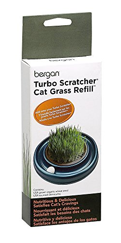 Bergan Turbo Accessories (Cat Grass Refill)