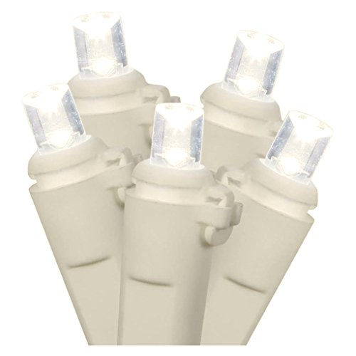 Vickerman 20-Light Battery Operated LED Warm White White Wire Wide Angle Set with 5-Feet Length