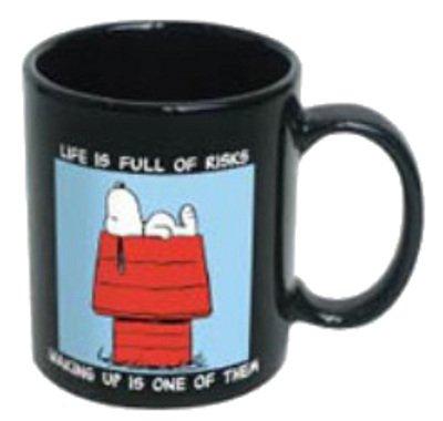 ICUP Peanuts Snoopy Life is Full of Risks Ceramic Mug, 11 oz, Black
