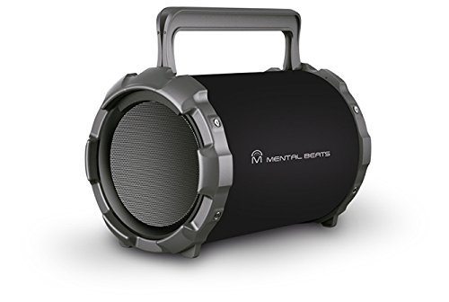 Jaras BIGRock Party Portable Karaoke & Bluetooth Speaker Indoor Outdoor Active Hi-Fi HD Sound Supports USB/SD/AUX/Mic Inputs FM Radio, 6 Sub + Built in Rechargeable Battery Power Bank 2600mah