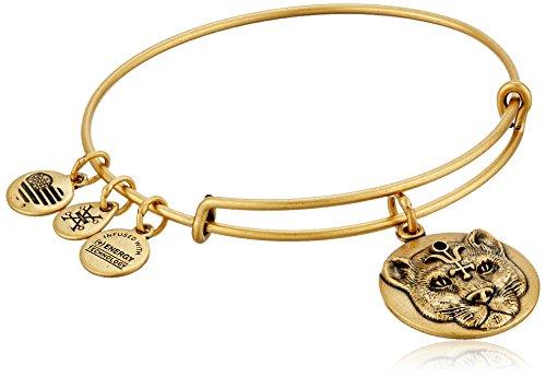 Alex and Ani Wild Heart Expandable Rafaelian Gold-Tone Bangle Bracelet