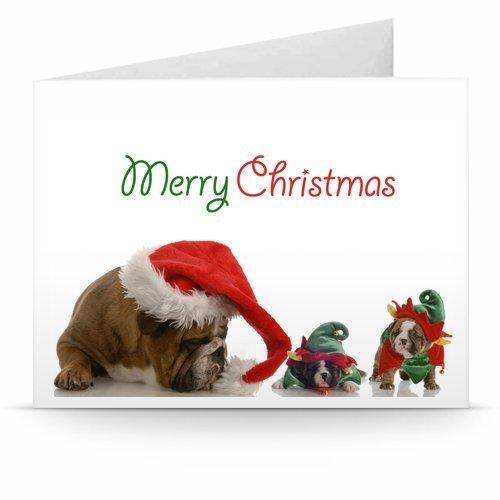 Christmas Dogs - Printable Amazon.co.uk Gift Voucher