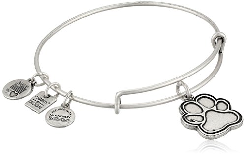 Alex and Ani Charity By Design Prints of Love Bangle Bracelet