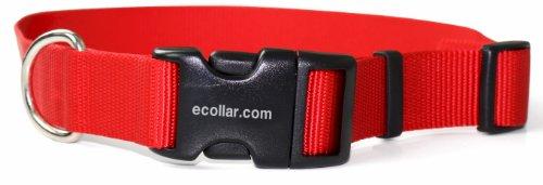 Educator Nylon Quick Snap Collar, 1-Inch, Red