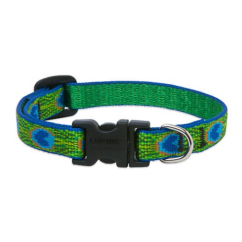 Lupine 1 Inch Tail Feathers Adjustable Dog Collar