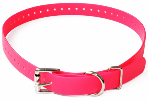 Educator Biothane Collar, 3/4-Inch, Pink