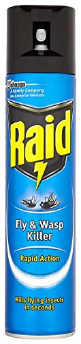 Raid Fly and Wasp Killer 300 ml (Pack of 6)