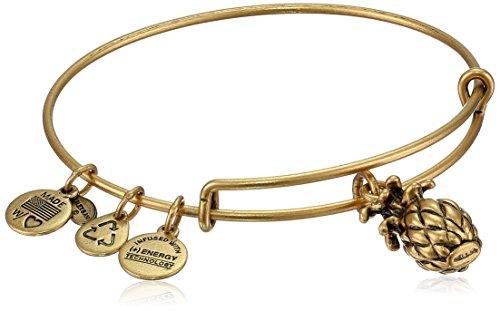 Alex and Ani Bangle Bar Pineapple Rafaelian Gold-Finish Expandable Bracelet