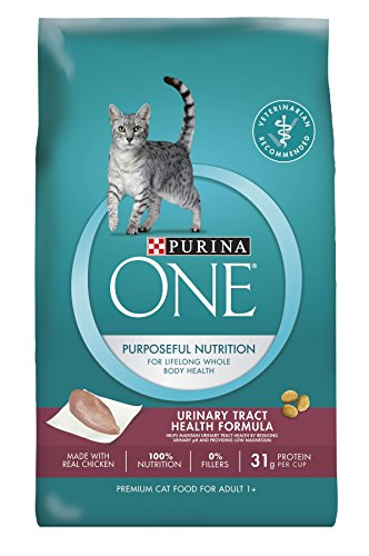 Purina ONE Dry Cat Food, Urinary Tract Health Formula, 22-Pound Bag, Pack of 1
