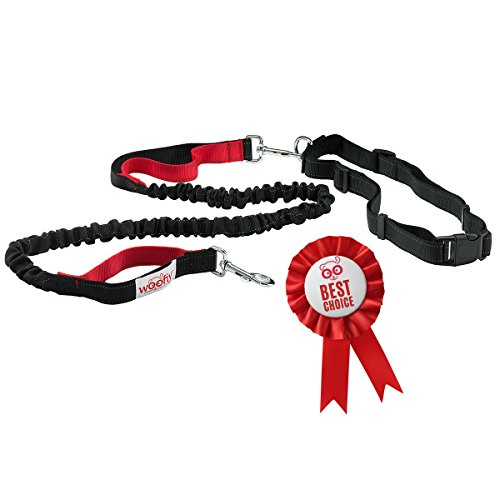 Hands Free Running Dog Lead / Dog Walking Belt by Woofiy - Reflective with Double Sided Lined Pouch - Great for Handsfree Running , Jogging or Walking - stitching up to 182. Cm long