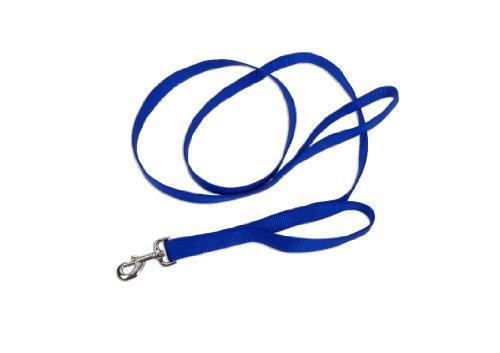 Loops 2® Double Handle Nylon Leash, 1 x 6'