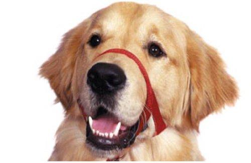 Jorvet J1011D Halti Head Collar for Dogs, Size 3