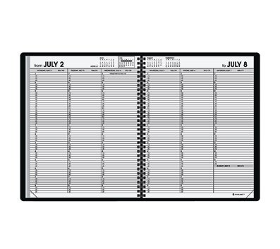AT-A-GLANCE Recycled Weekly Appointment Book, 6 7/8-Inch x 8 3/4-Inch, Black, 2012/2013 (70-958-05)