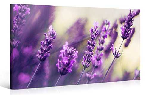 Large Canvas Print Wall Art - PURPLE LAVENDER - 40x20 Inch Flower Canvas Picture Stretched On A Wooden Frame - Giclee Canvas Printing - Hanging Wall Deco Picture / e6465