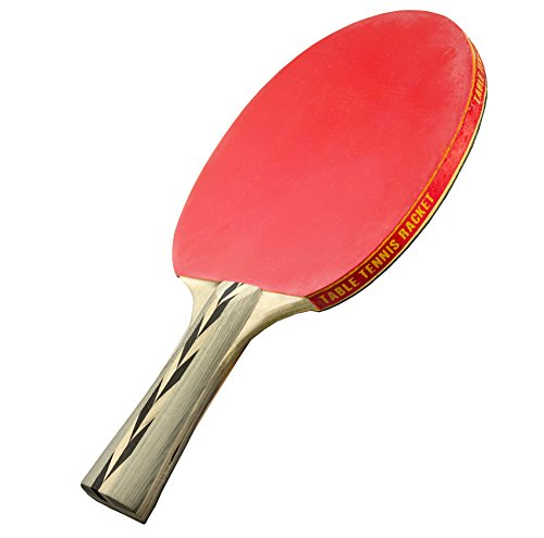 Sportly Table Tennis Accessories - Spintermediate Ping Pong Paddles - Light, Fast Competition Racket with Excellent Spin and Control - Ideal for Intermediate or Advanced Beginner Looking for Increased Performance and Speed - Single