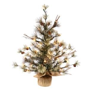 Vickerman Pre-Lit Dakota Pine Tree with 35 Clear Mini Lights, 24-Inch, Green