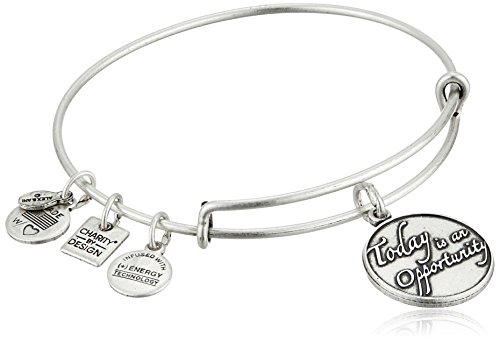 Alex and Ani Charity By Design Today Is An Opportunity Rafaelian Silver Bangle Bracelet