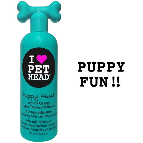Pet Head Fears for Tears Tearless Shampoo (16.1 fl.oz)  (Discontinued by Manufacturer)