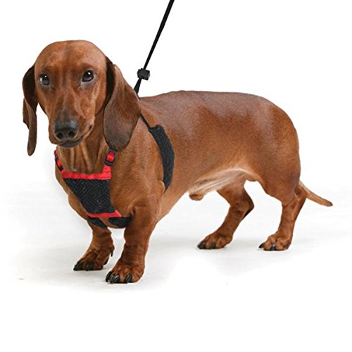 Sporn Nylon Non Pulling Dog Harness, Small, Red