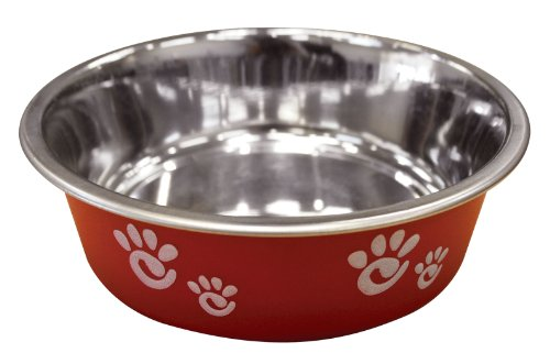 Ethical Pet Barcelona Matte and Stainless Steel Pet Dish, 8-Ounce, Raspberry