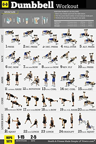 Fitwirr Men's Dumbbell Workout Poster 18 X 24, 25 Dumbbell Exercises To Create Effective Home Workouts That Burns Fat & Build Muscles - Create The Dumbbell Workout Routine Our Exercise Poster