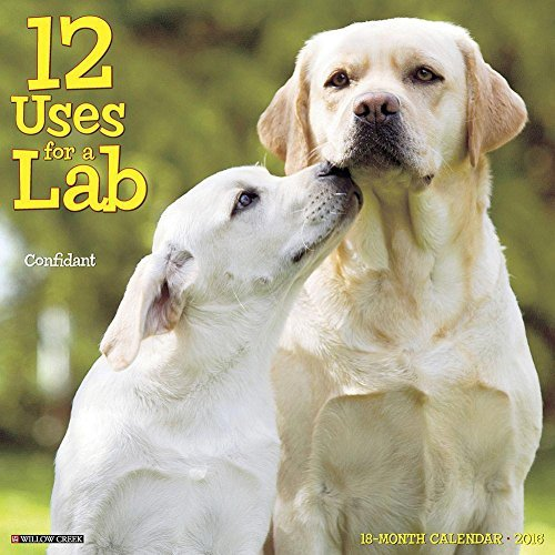 12 Uses for a Lab 2016 Wall Calendar