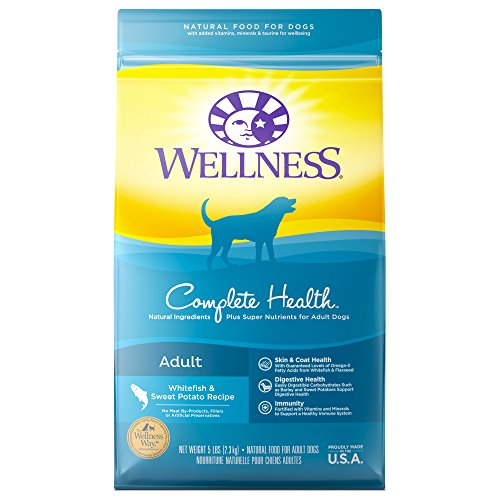 Wellness Complete Health Natural Dry Dog Food, Whitefish & Sweet Potato, 5-Pound Bag
