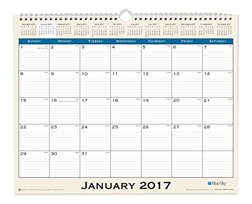 Blue Sky 2017 Monthly Wall Calendar, Wire-O Binding, 15 x 12, Journey (19586)