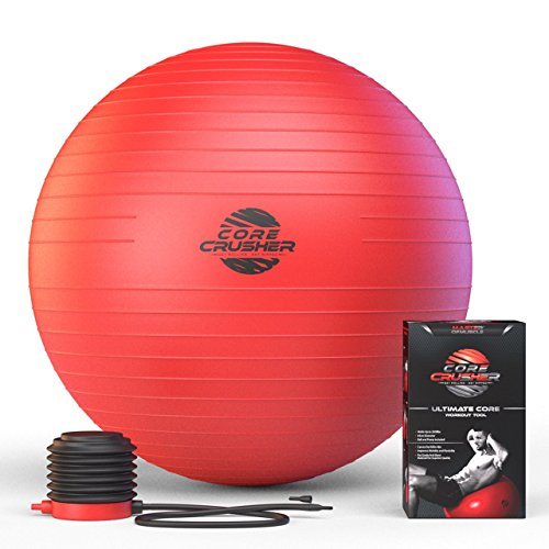 SPECIAL TODAY - Fitness Swiss Ball 65cm with Pump - Best for Abs - Stability & Tone - Made with Anti-Burst Material - For Cross Fitness - Yoga & Pilates - Free Ebook Included Featuring 20 Core Crushing Exercises & Workouts
