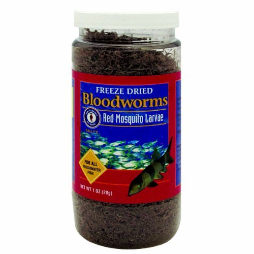 SFB Bloodworms 1 oz