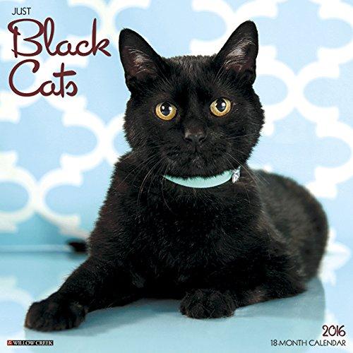 2016 Just Black Cats Wall Calendar