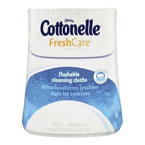 Cottonelle Fresh Care Flushable Moist Wipes Upright Dispenser, 42 Count