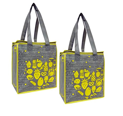 Earthwise Large Insulated Reusable Bag (2 Pack)