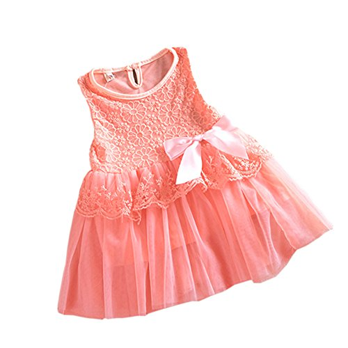 PanDaDa Baby Girls One Piece Floral Dress Lace Bowknot Party Ballet Skirts 0-3Y