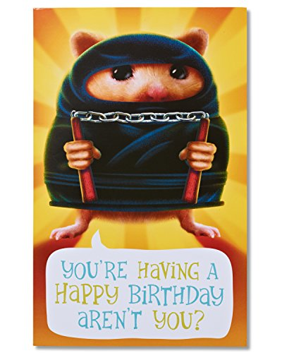Funny Hamster Ninja Birthday Card