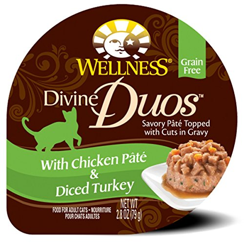 Wellness Divine Duos Grain Free Chicken & Turkey Natural Wet Cat Food, 2.8-Ounce Cup