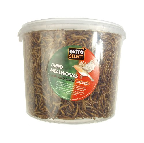 Extra Select Mealworms 5 L Tub