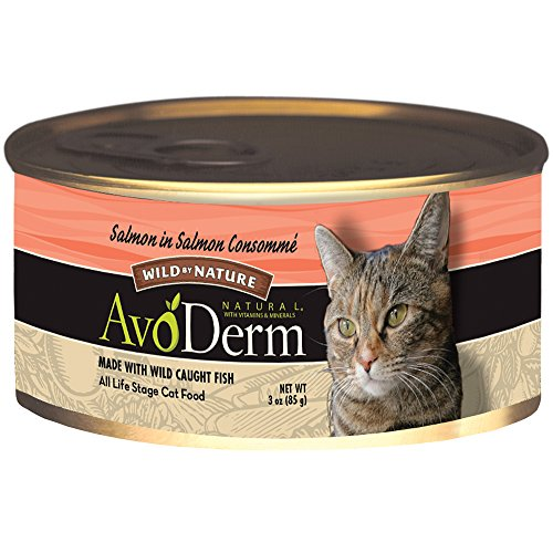 AvoDerm Salmon Consomme Cat Food, 3-Ounce, 24-Case
