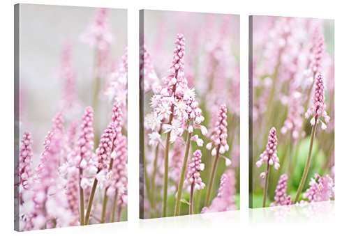 Large Canvas Print Wall Art - FIELD OF PINK FLOWERS - 48x30 Inch - 3 panel Flower Canvas Picture Stretched On A Wooden Frame - Giclee Canvas Printing - Hanging Wall Deco Picture / e6342
