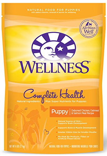 Wellness Complete Health Puppy Chicken, Salmon & Oatmeal Natural Dry Dog Food, 6-Pound Bag